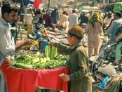 FoodPolitics